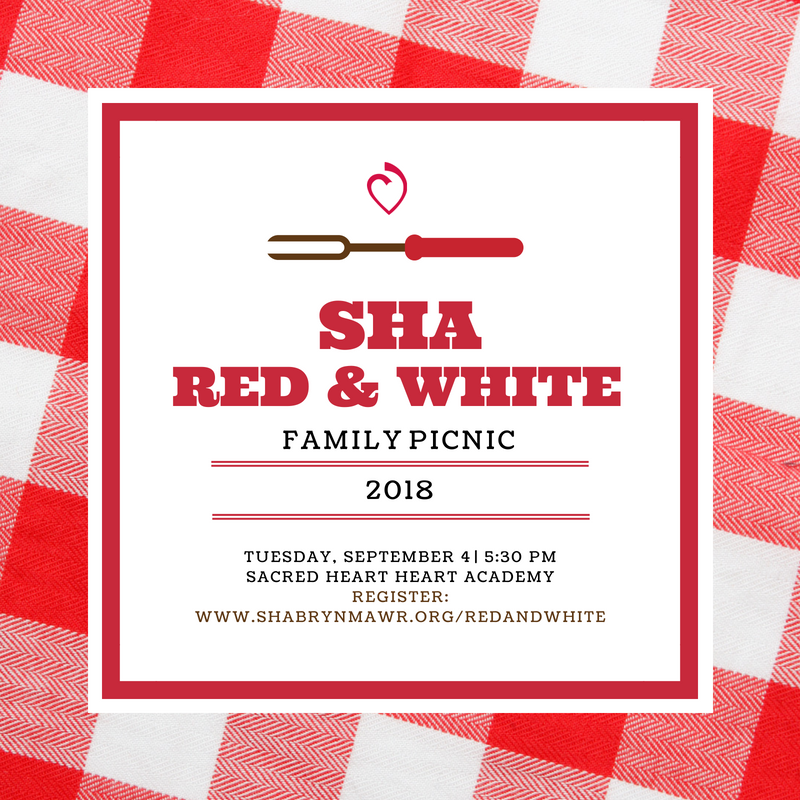 Red & White Picnic
